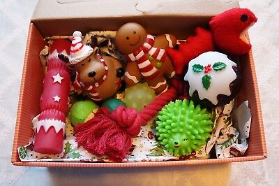 SMALL DOG AND PUPPY CHRISTMAS DOG BOX FILLED WITH 10 QUALITY FESTIVE FUN TOYS