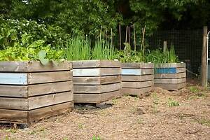 Raised (wicking) garden beds from recycled onion crates Mount Torrens Adelaide Hills Preview