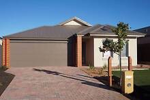 Beautiful 4 x 2 NEW home at The Vines The Vines Swan Area Preview