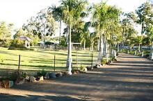 Noosa- 5 clean Acres, 5 Bedroom, Large Brick House+++++ Cooroibah Noosa Area Preview