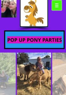 Pop Up Pony Parties Northam 6401 Northam Area Preview