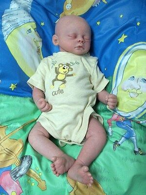 Sweet Reborn Baby Doll Marissa May's Meg Anatomically Correct boy Bradley on Rummage