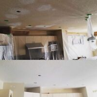 LOOKING TO PAINT YOUR HOUSE?OXQRenovations