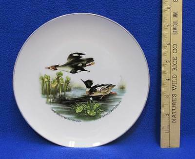 Red Breasted Merganser Ducks Collectors Plate John James Audubon Design 7 5/8""
