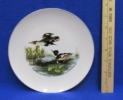 "Red Breasted Merganser Ducks Collectors Plate John James Audubon Design 7 5/8"""