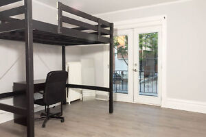 January 1 and May 1st  - Furnished 4 Bed - Steps to Carleton U