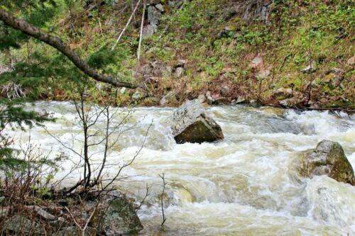 Ontario Creek Montana Placer Gold Mine Mining Claim MT Creek Panning Sluice Gems