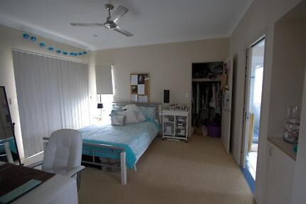 Beach house, 1 large room w/ seaview from your balcony Palm Beach Gold Coast South Preview
