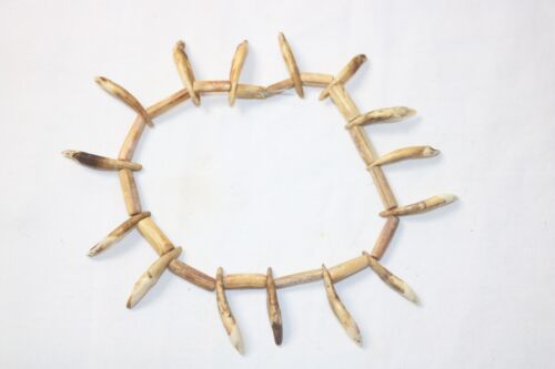 OHIO FEURT SITE BONE AND TOOTH NECKLACE - LAWSON