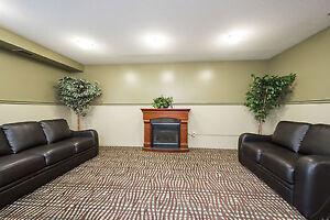 Huge Renovated Two Bedroom Suites - New Kitchens and Flooring! London Ontario image 11