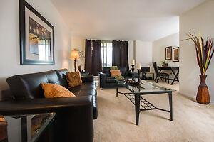 Newly Renovated 2 Bedroom, 2 Bathroom Apartments - Close to UWO