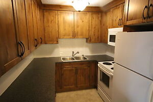 Condo 3blk to UofL 2 Bed ALL UTILITIES INCLUDED REDUCED!