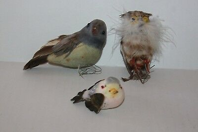 Lot of 3 Artificial Craft BIrds With Feathers (B)