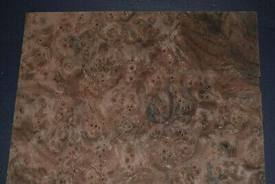 Walnut Burl Wood Veneer Sheets 9 X 15   Ifpa7369-46