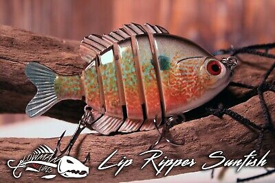 """Bass Castaic Jerky J Soft Jerkbaits 3.5/"""" Pack 10 Stryper Fishing Lure Bait"""