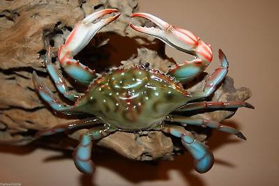 Crab Shack Restaurant Decor Lifelike Blue Crab Replicas 3-d 6 Inch