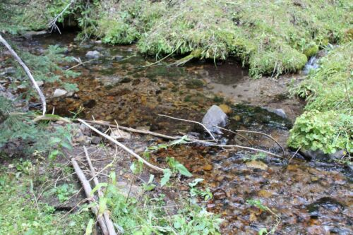 Montana Placer Gold Mine Mining Claim MT Creek Panning Sluice Gems French Creek