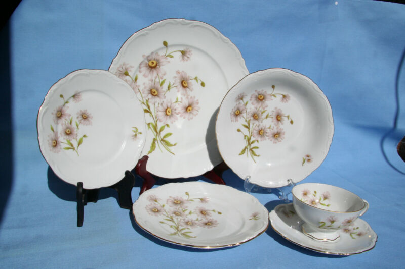 Mitterteich Bavaria Daisy Bell China set - Service for 12