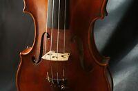Bellissimo Violino Artigianale 4/4 - Muzhibin Master Violin Firm 2013 N°243 -  - ebay.it
