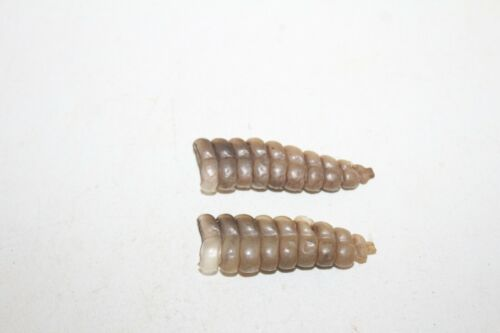 2 Rattlesnake rattles    6B08   side winder sidewinder diamondback diamond back