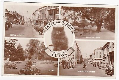 Black Cat Multiview, LUTON, Bedfordshire RP