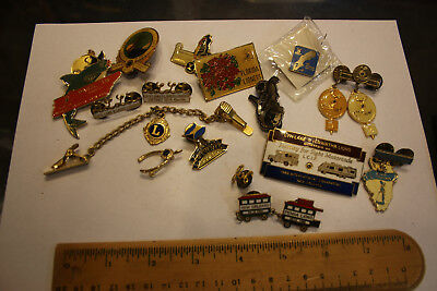 """Lion's Club """"Lioness"""" Pin lot assorted mix of pins 14+ PCS WOW LOOK!  JSH"""