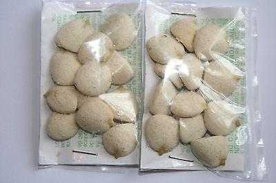 2 Packs  24  Nuez De La India Original 100  Nut Indian Seed Chino Dr Ming Te