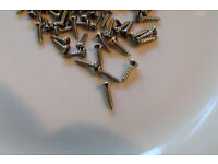 20 NEW STAINLESS STEEL PICK-GUARD SCREWS for FENDER JAZZ BASS /& P-BASS BUILD