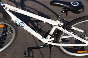 BYK Hybrid Bike - E550x16