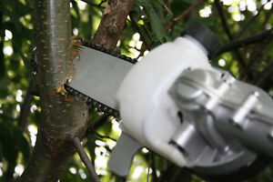 HANDY PRUNER ATTACHMENT WILL FIT RYOBI MCCULLOCH