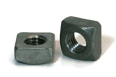 """Square Nuts Hot Dipped Galvanized Grade 2 - 1/4""""-20 UNC - QTY 50"""