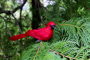 Clip-on Red Cardinal ORNAMENT 7