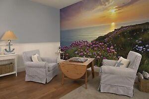 pared-murales-Gigante-Land-s-End-Ideal-Para-Cuarto-De-Estar-amp-Dormitorio