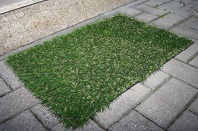 Artificial Grass Outdoor Carpet Door Mat Green Doormat Indoor Area Rug  60x40CM