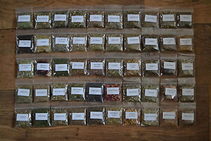 Magical Herb Kit B ~ 50 named herbs & their magical uses ~ Spell ~ Pagan ~ Wicca