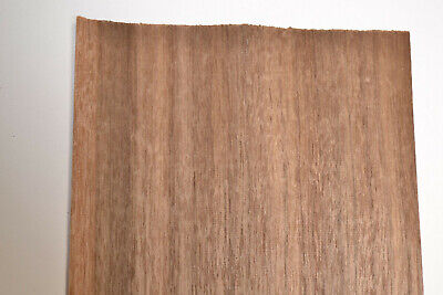 Queensland Walnut Raw Wood Veneer Sheets 6 X 46 Inches142nd Thick  8704-32