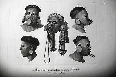 BRAZIL,BOTOCUDES etching original 1822,Savages LIPS WOODWIND,EARS