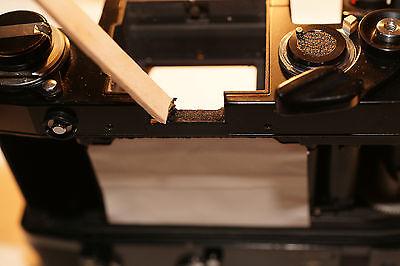 Light seal replacement Minolta XK Motor