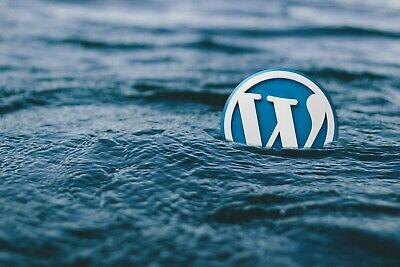 Newspaper 10.3.3 Wordpress Theme Plugins Latest Version Updated By