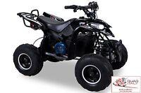 Miniquad 1000 W Nero Elettrico Sport Nuovo Quad Mini Super Offerta -  - ebay.it