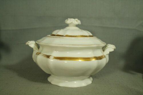 White porcelain china covered dish bowl sugar gravy gold antique old vintage