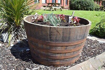Ex whiskey barrel PLanters - 2 1/2 barrels for £50.00