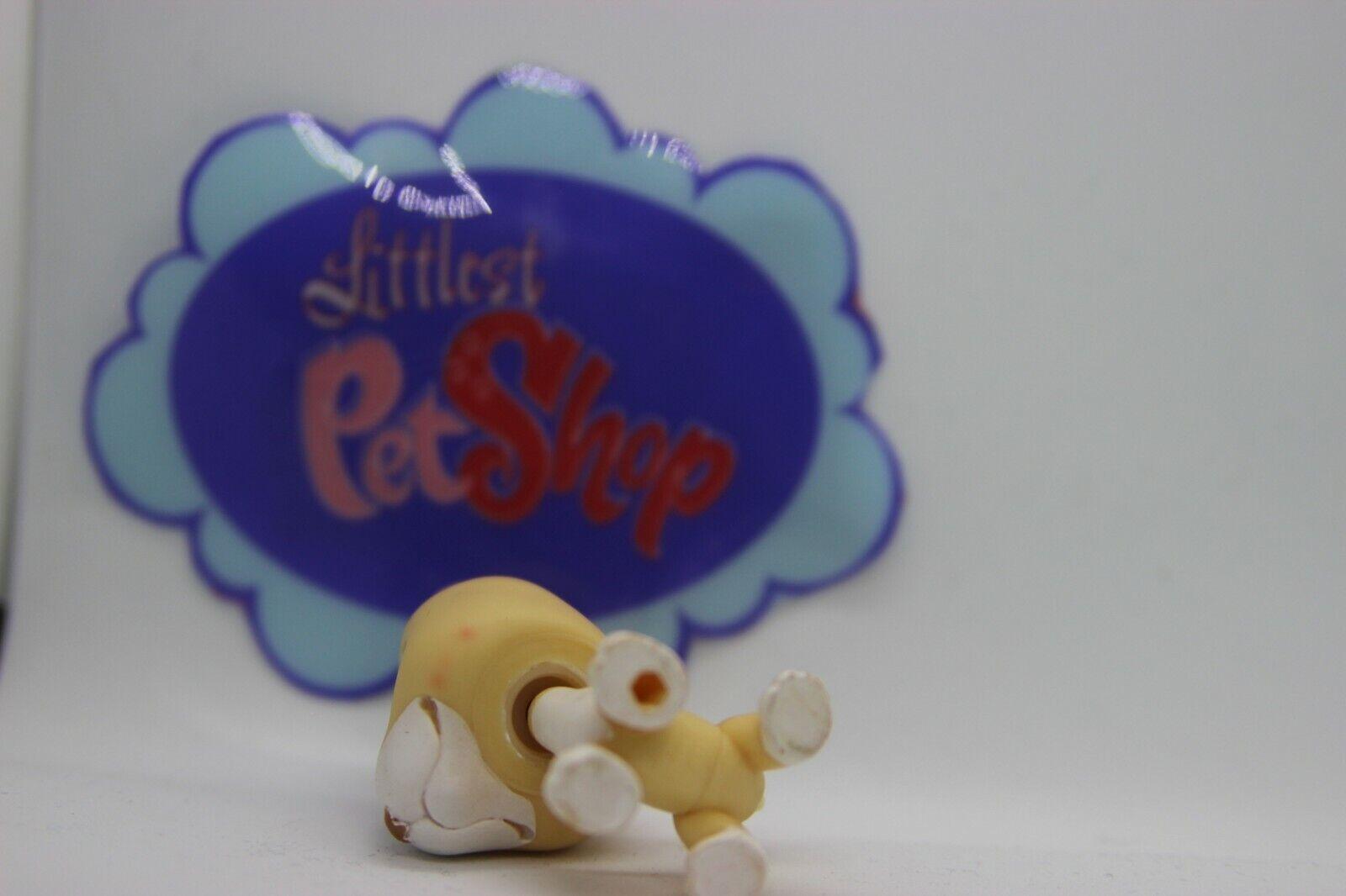 Lps littlest pet shop lps dog chien pit bull terrier #860 authentic
