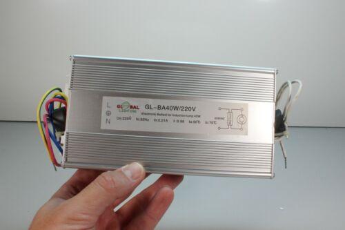 Global Lighting Electronic Ballast for 40 Watt Induction Lamp...804