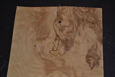 Olive Ash Burl Raw Wood Veneer Sheet 10.5 X 17 Inches 142nd Thick J7622-15