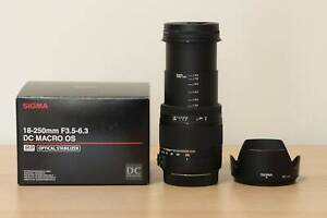 Sigma 18-250mm f/3.5-6.3 DC MACRO OS Lens for Canon with Kenko filter