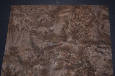Walnut Burl Raw Wood Veneer Sheets 142nd Thick  Ifpa7369-34