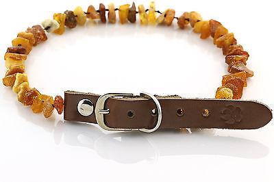 "Raw Baltic Amber Anti-Tick Anti Flea Dog Collar Necklace 36-41cm / 14.1-16.1"" 20"