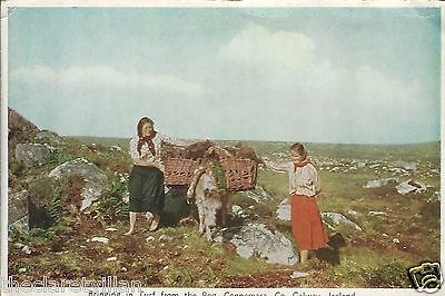 Bringing in the Peat from the Bog  Connemara donkey Old Unposted Postcard