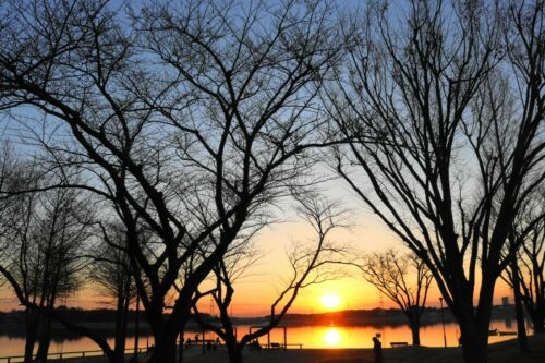Image Digital Photo Park Sunset  JPG file Material #058